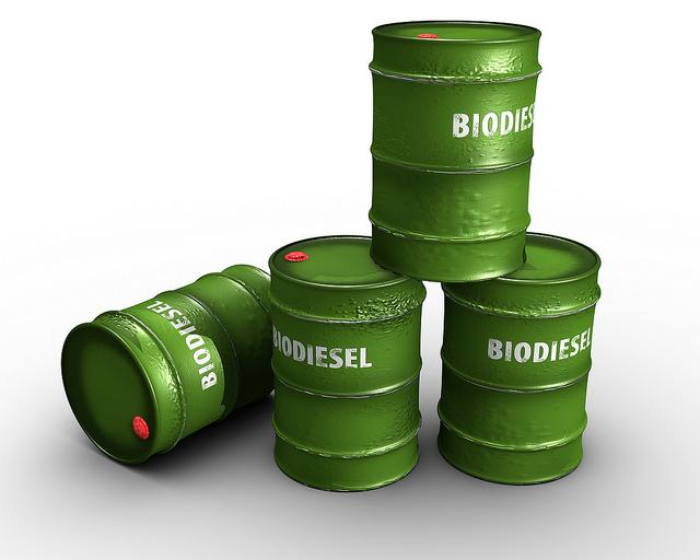 Biodiesel Catalyst Market